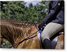 Acrylic Print featuring the photograph Braided Mane by Betty Denise