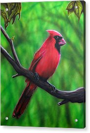 Branch Manager Acrylic Print by Mike Wilber