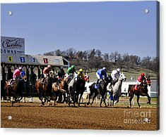 Acrylic Print featuring the photograph Breaking From The Gate by Nava Thompson