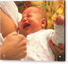 Breast-feeding: Baby's Crying Causes Milk Flow Acrylic Print by David Parker