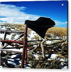 Breezy Day Acrylic Print by Wesley Hahn