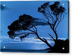 Brela Blue Version Acrylic Print