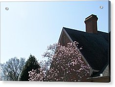 Acrylic Print featuring the photograph Brick And Blossom by Pamela Hyde Wilson