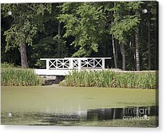 Bridge Over An Algae Covered Pond Acrylic Print by Jaak Nilson