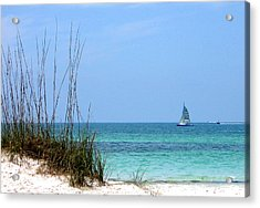 Acrylic Print featuring the photograph Bright Blue by Ginny Schmidt