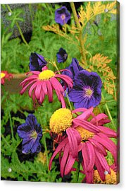 Bright Colors Acrylic Print by Wide Awake Arts