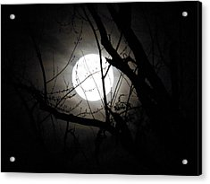 Bright Night Acrylic Print by Gloria Warren