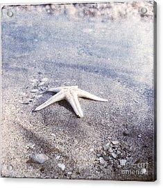 Bright Star Acrylic Print by Paul Grand