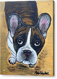 Brindle Frenchie Acrylic Print