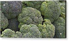 Broccoli Acrylic Print by Forest Alan Lee