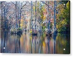 Brock Millpond 5 Acrylic Print by Rob Hemphill