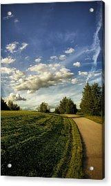 Broemmelsiek Park Walking Track Acrylic Print by Bill Tiepelman