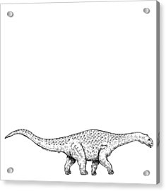 Brontonsaurs - Dinosaur Acrylic Print by Karl Addison