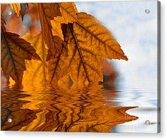 Bronze Reflections In Autumn Acrylic Print