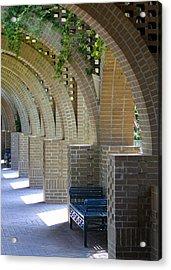 Brookgreen Arches Acrylic Print by Sandi Blood