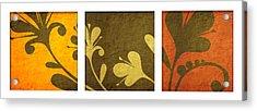 Brown Decor Acrylic Print by Nomi Elboim