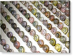 Brown-lipped Snail Colour Variants Acrylic Print by Dr Keith Wheeler