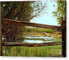 Brown Ranch Pond Of Ramsey Canyon Acrylic Print