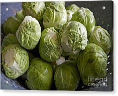 Brussel Sprouts Acrylic Print by Gwyn Newcombe