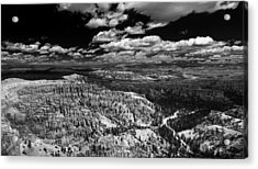 Bryce Canyon Ampitheater - Black And White Acrylic Print by Larry Carr