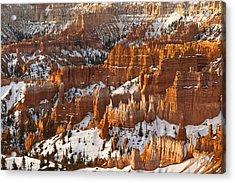 Bryce Canyon Morning Light  Acrylic Print