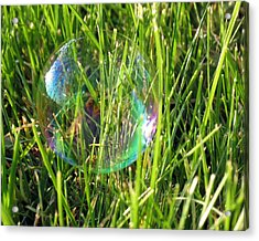 Acrylic Print featuring the photograph Bubble In The Grass by Darleen Stry