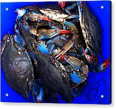 Bucket Of Blue Crabs Acrylic Print by Laura Tarnoff
