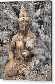 Buddha Nature Acrylic Print by Jane Linders