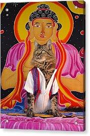 Acrylic Print featuring the photograph Buddhapuss by Joann Biondi