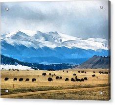 Buffalo Herd Painterly Acrylic Print by Ernie Echols