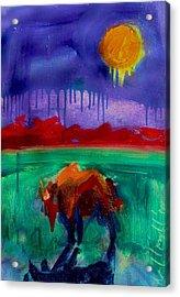Buffalo Moon Acrylic Print