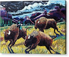 Buffaloes Race The Storm Acrylic Print by Harriet Peck Taylor