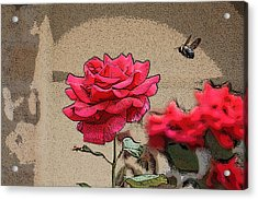 Acrylic Print featuring the photograph Bumble Bee And Rose by Donna  Smith