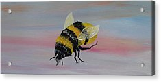 Bumble Bee Acrylic Print by Mark Moore