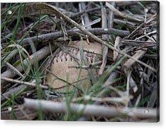 Acrylic Print featuring the photograph Buried Baseball by Stephanie Nuttall