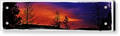 Acrylic Print featuring the photograph Burning Sunrise by Janie Johnson