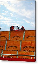 Busched Acrylic Print