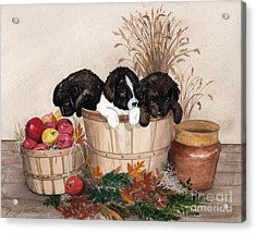 Acrylic Print featuring the painting Bushel Of Fun  by Nancy Patterson