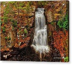 Bushkill Main Falls Acrylic Print by Nick Zelinsky