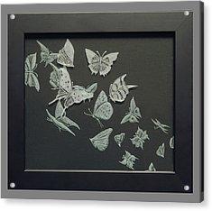 Butterflies Acrylic Print by Akoko Okeyo