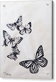 Acrylic Print featuring the drawing Butterflies And Moths by Rod Ismay