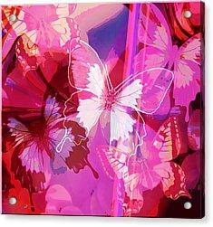 Butterflies En Rouge Acrylic Print by Jan Steadman-Jackson