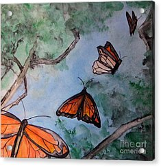 Butterflies Acrylic Print by Jana Barros