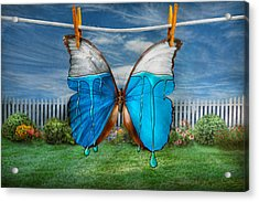 Butterfly - Morpho - I Hate It When The Colors Run Acrylic Print by Mike Savad