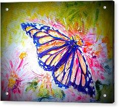 Butterfly Beauty 3 Acrylic Print by Raymond Doward