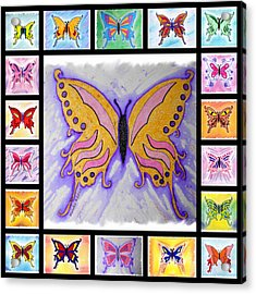Butterfly Collage Acrylic Print by Mark Schutter