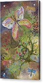 Butterfly Daydream Acrylic Print by Elizabeth Clary-Boyd