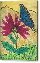 Butterfly Explorations Acrylic Print
