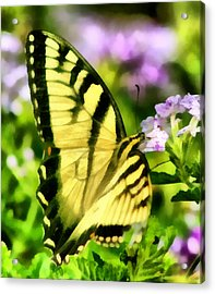 Acrylic Print featuring the painting Butterfly by Lynne Jenkins