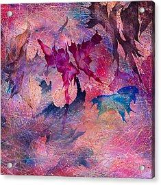 Butterfly Acrylic Print by Rachel Christine Nowicki